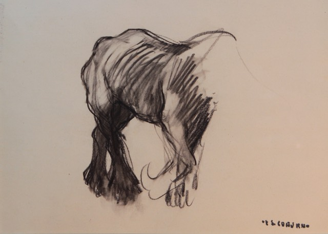 F S Coburn Horse Unframed Final